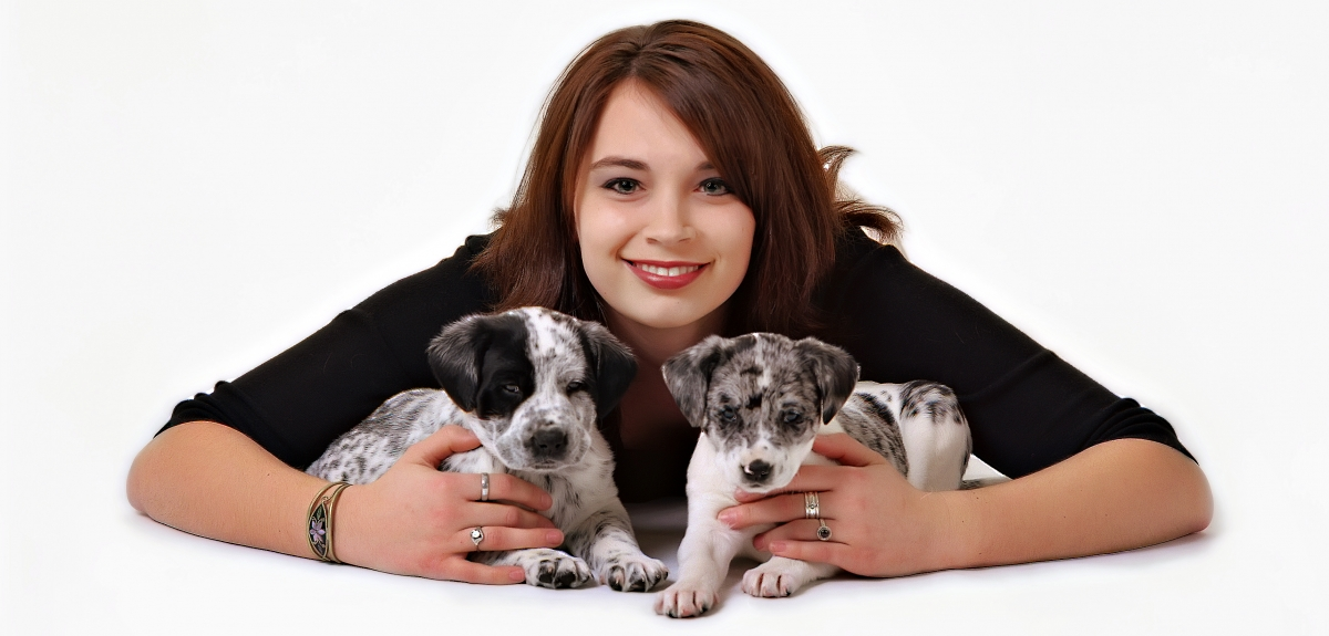 Girl with puppies, puppy photos, puppies with owner photos, indoor canine portrait, dog on blue background, best pet photographer Everett WA